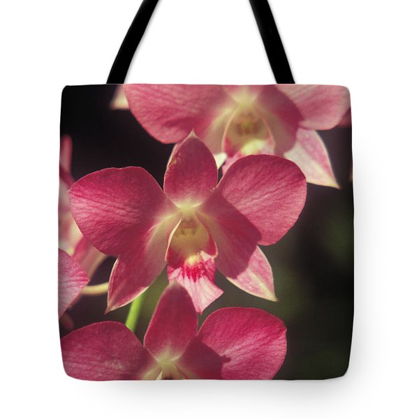 Orchid Flowers Tote Bag by Kyle Rothenborg - Printscapes