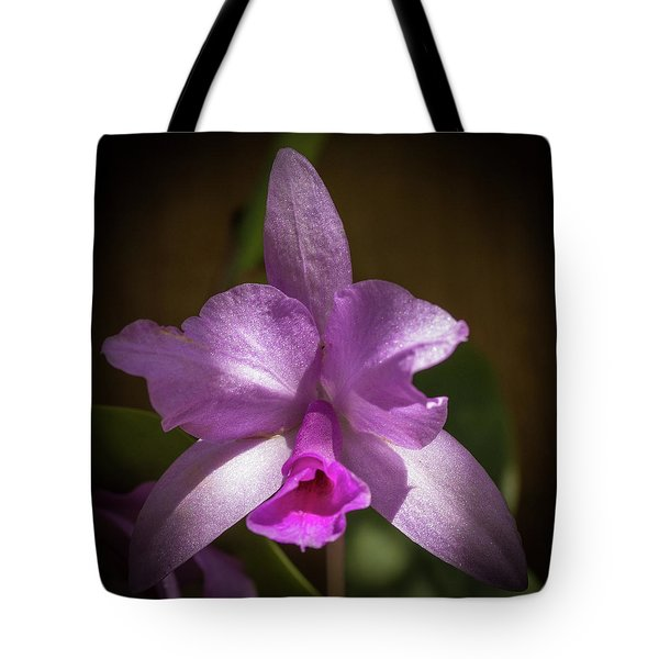 Tote Bag featuring the photograph Orchid In The Shadows by Richard Goldman