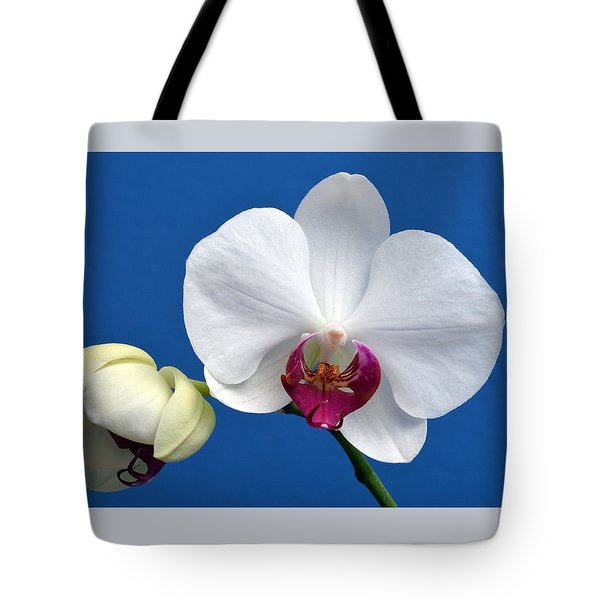 Orchid Out Of The Blue. Tote Bag by Terence Davis