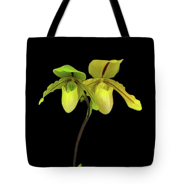 Tote Bag featuring the photograph Orchid Paphiopedilum Druid Spring by Susan Wiedmann
