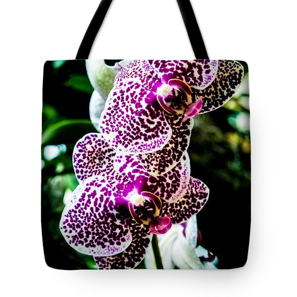 Tote Bag featuring the photograph Orchid - Pla236 by G L Sarti