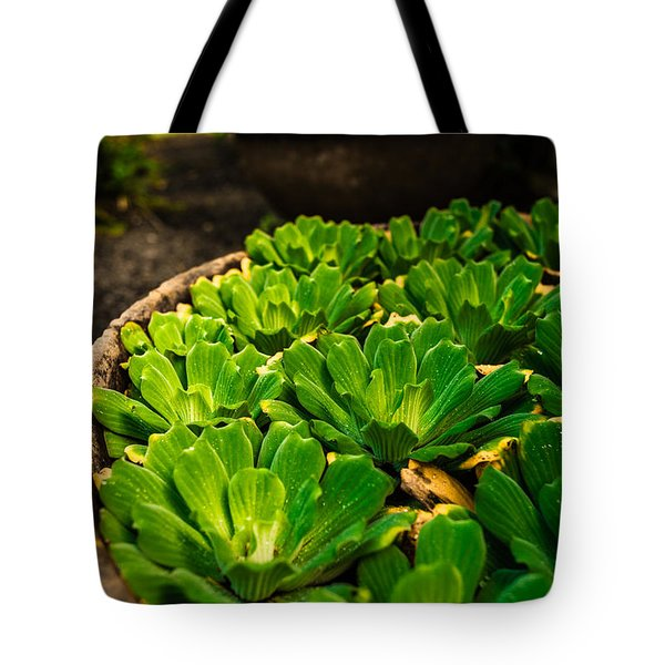 Orchid Pond Tote Bag