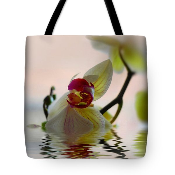 Tote Bag featuring the photograph Orchid Reflection by Elaine Manley