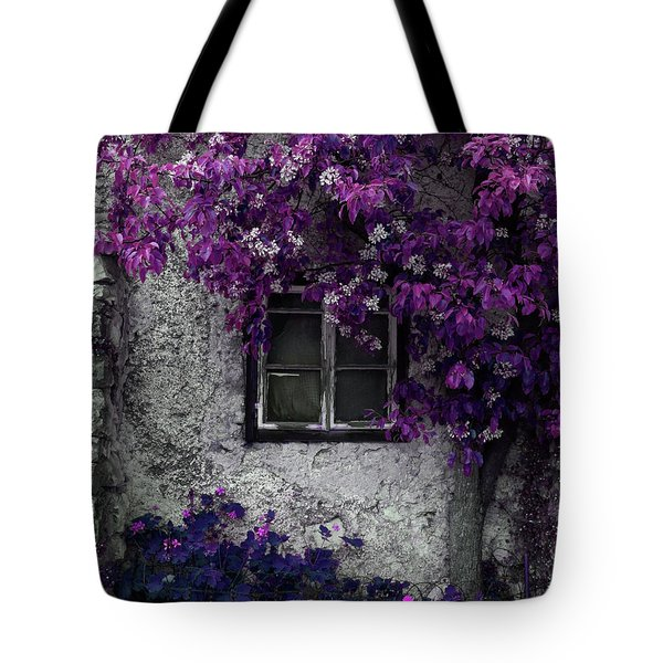 Orchid Vines Window And Gray Stone Tote Bag