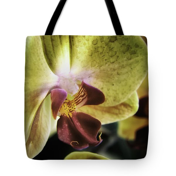 Orchid With A Tongue Tote Bag