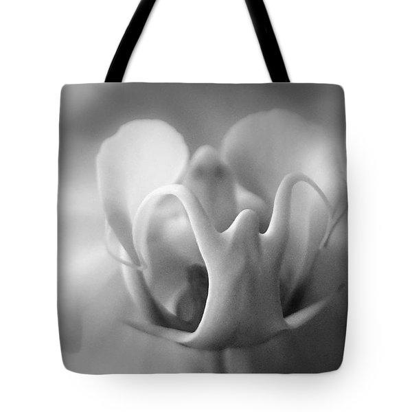 Ghostly Grandeur Tote Bag