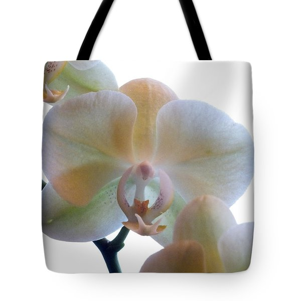 Orchids 3 Tote Bag