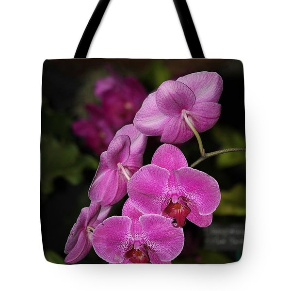 Orchids Alicia Tote Bag