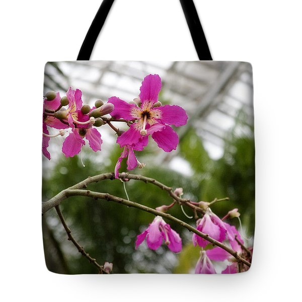 Orchids Myriad Botanical Gardens Okc Tote Bag by Toni Hopper