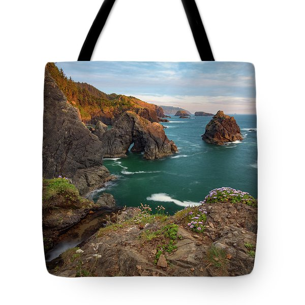 Oregon Coastal Scenic Tote Bag by Leland D Howard
