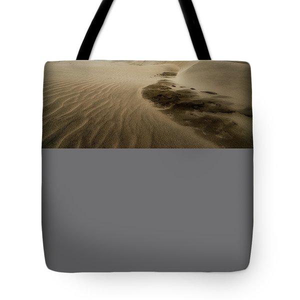 Oregon Dune Wasteland 1 Tote Bag by Ryan Manuel
