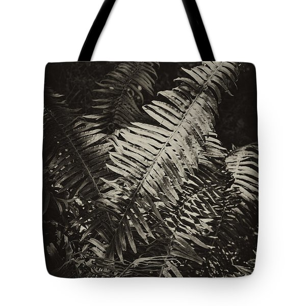 Tote Bag featuring the photograph Oregon Fern by Hugh Smith