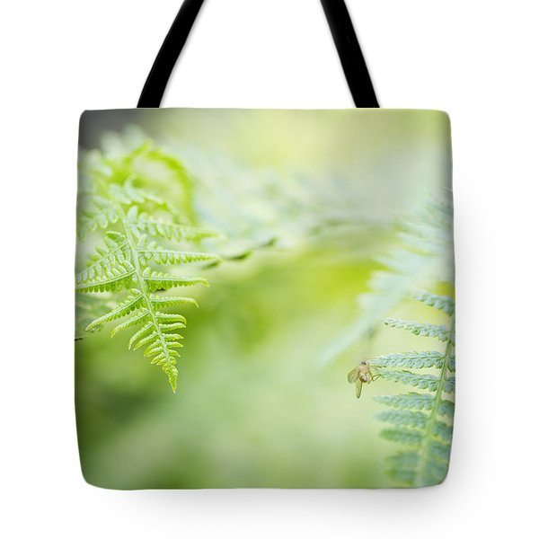 Tote Bag featuring the photograph Oregon Ferns by Charmian Vistaunet
