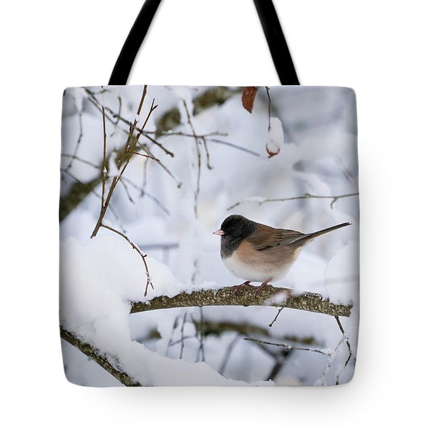 Tote Bag featuring the photograph Oregon Junko In Snow by Brian Bonham