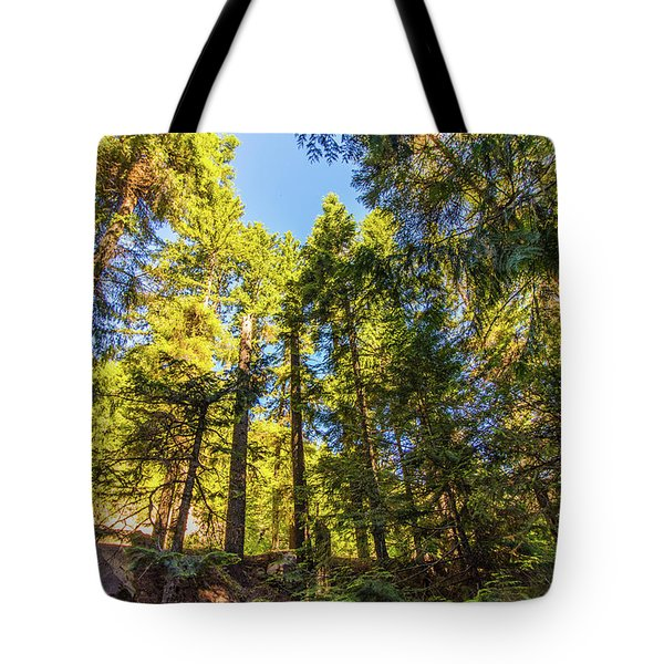 Tote Bag featuring the photograph Oregon Trees by Jonny D