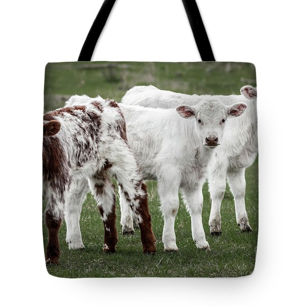 Oreo And The Twins Tote Bag