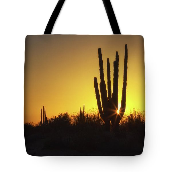 Organ Pipe Cactus Tote Bag