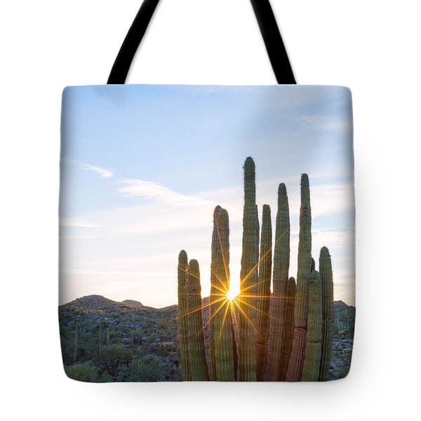 Tote Bag featuring the photograph Organ Pipe Cactus by Patricia Davidson