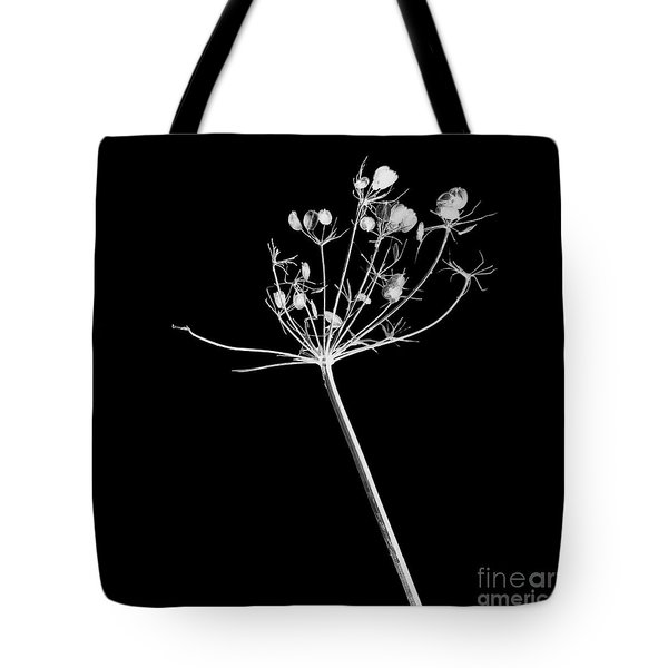 Organic Enhancements 9 Tote Bag by Paul Davenport