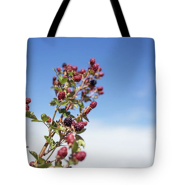 Tote Bag featuring the photograph Organic Handpicked Home Orchard Raspberries,blackberries From Bu by Jingjits Photography