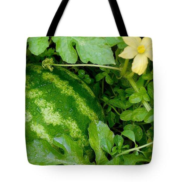 Organic Watermelon Tote Bag