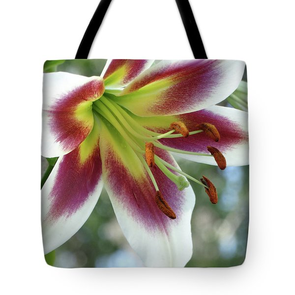 Oriental Lily In Summer Sunset Tote Bag