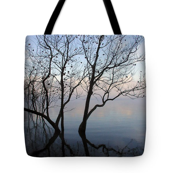 Tote Bag featuring the photograph Original Dancing Tree by Paula Guttilla