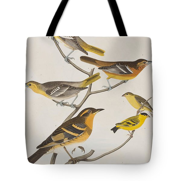 Orioles Thrushes And Goldfinches Tote Bag by John James Audubon