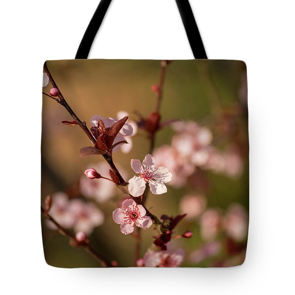 Tote Bag featuring the photograph Purple Leaf Sandcherry Blossoms 2 by Keith Smith