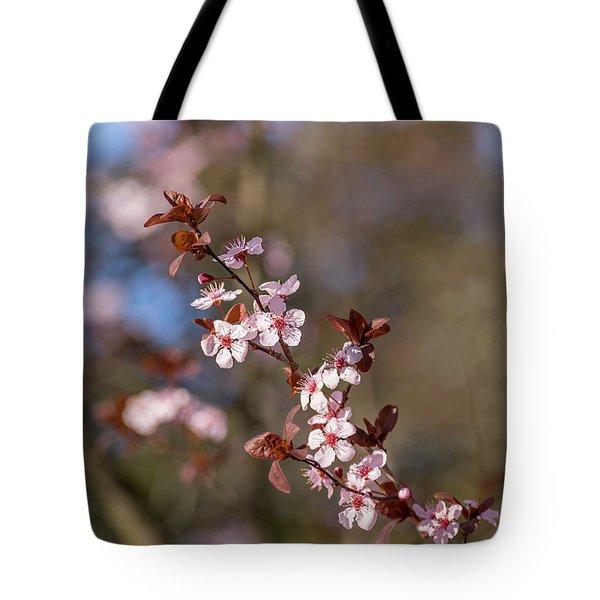 Purple Leaf Sandcherry Blossoms Tote Bag