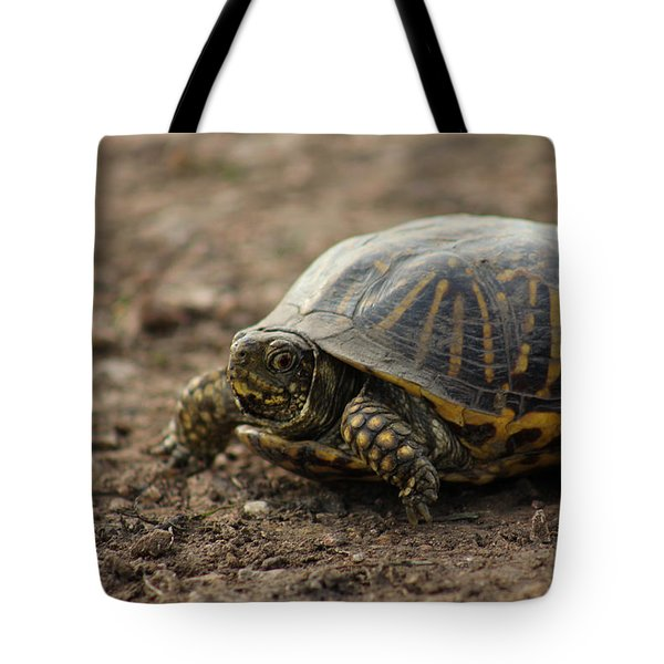 Tote Bag featuring the photograph Ornate Box Turtle by E B Schmidt