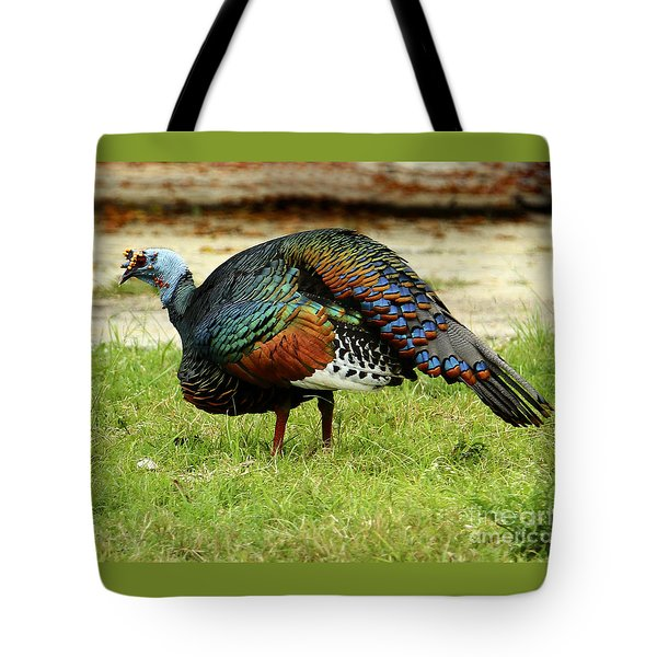 Oscillated Turkey Tote Bag by Kathy McClure