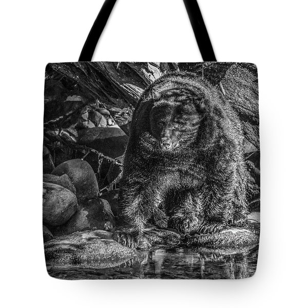 Oservant Black Bear  Tote Bag