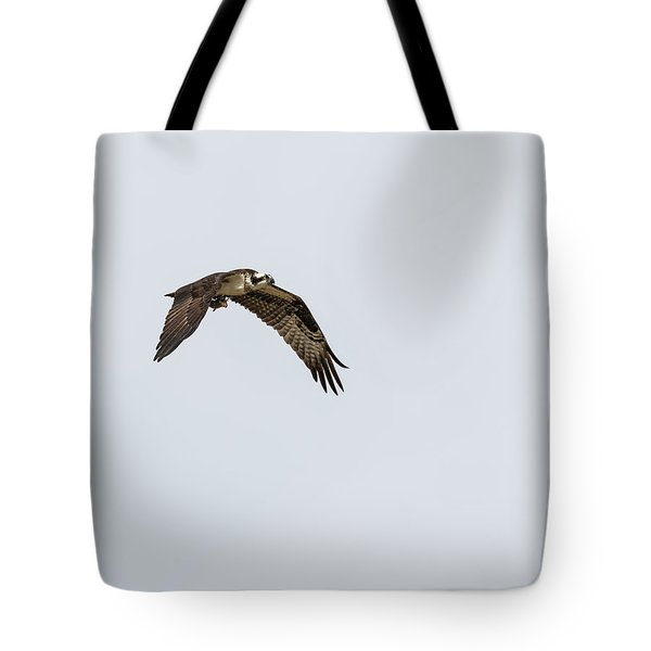 Tote Bag featuring the photograph Osprey 2017-2 by Thomas Young