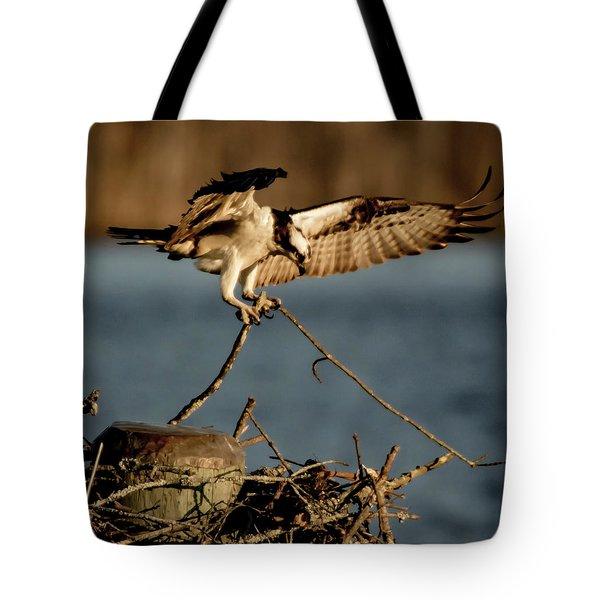 Osprey 2017-3 Tote Bag
