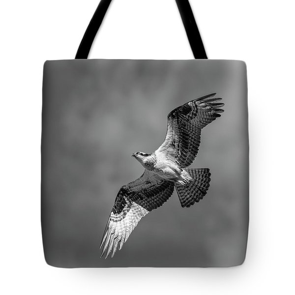 Tote Bag featuring the photograph Osprey 2017-4 by Thomas Young