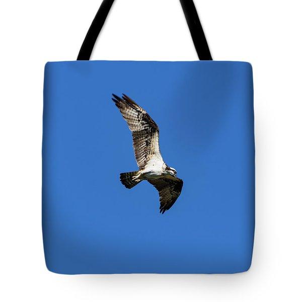 Osprey 5 Tote Bag