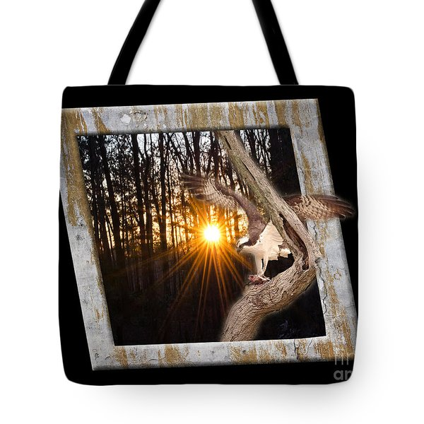 Osprey At Sunset  Black Tote Bag