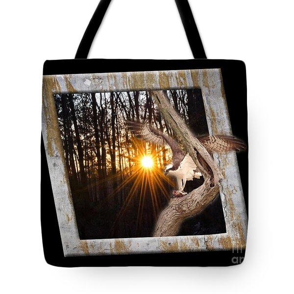 Osprey At Sunset  Black Tote Bag by Donna Brown