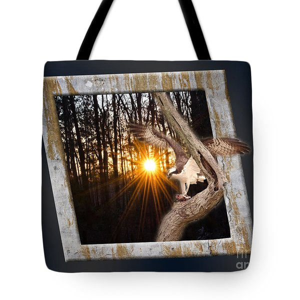 Osprey At Sunset Tote Bag