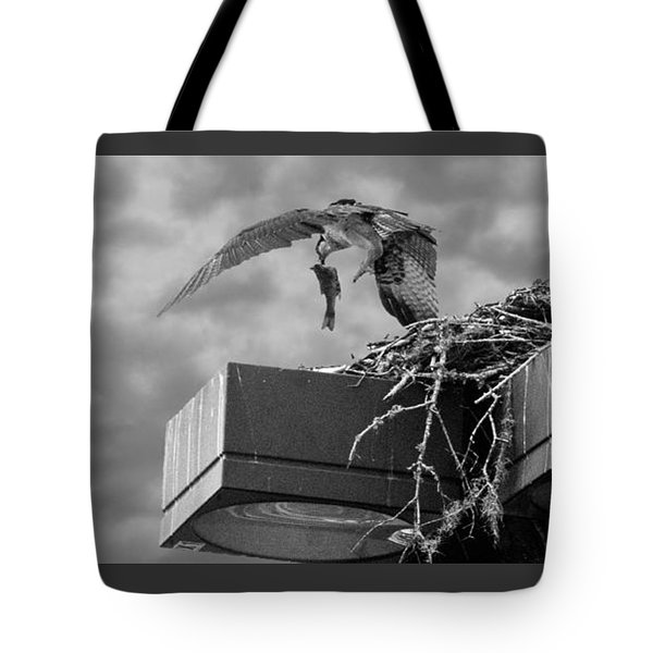 Osprey Carrying Fish To Nest Tote Bag