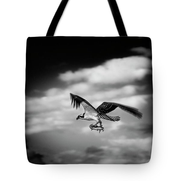 Osprey Catch Of The Day Tote Bag by Chrystal Mimbs