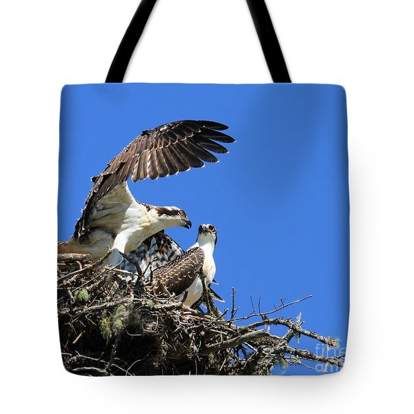 Osprey Chicks Ready To Fledge Tote Bag