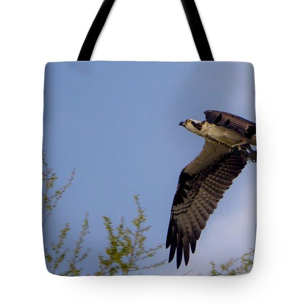 Osprey Collecting Sticks Tote Bag