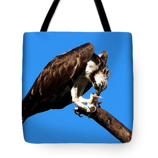 Tote Bag featuring the photograph Osprey Feeding 004  by Chris Mercer