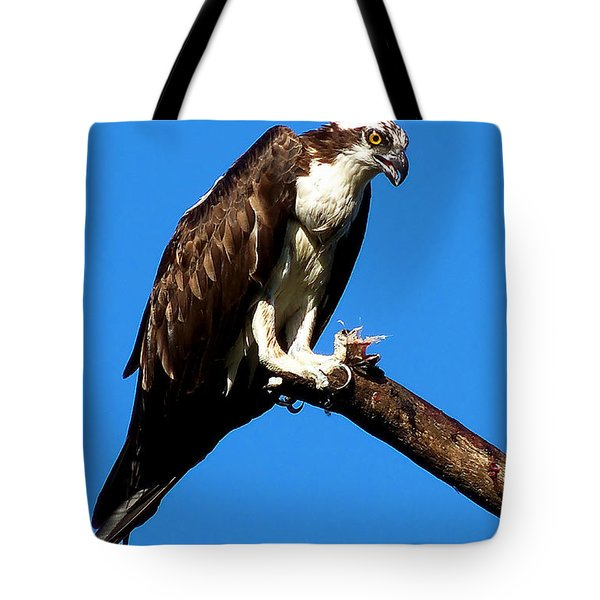 Tote Bag featuring the photograph Osprey Feeding 006 by Chris Mercer