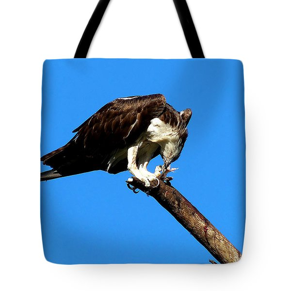 Tote Bag featuring the photograph Osprey Feeding 007 by Chris Mercer