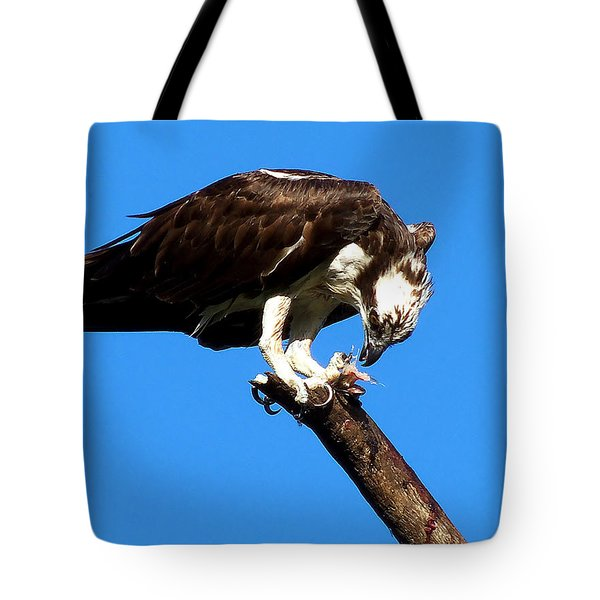 Osprey Feeding 008 Tote Bag by Chris Mercer