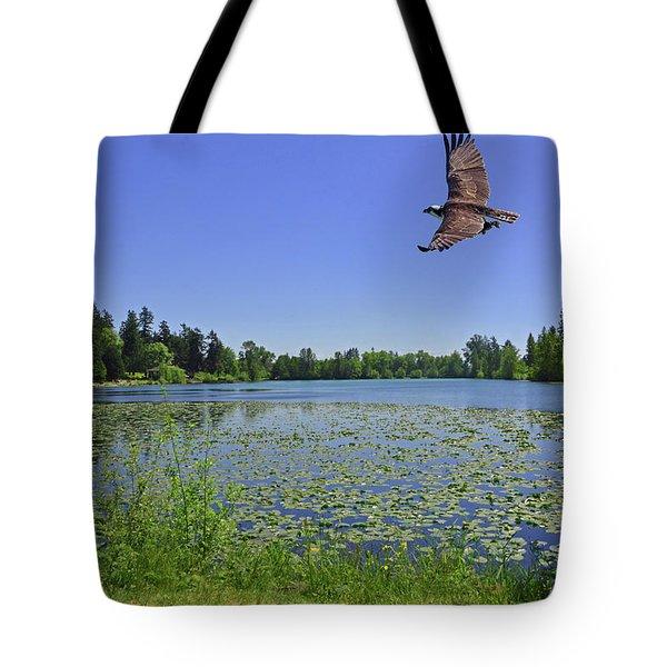 Osprey Fishing At Wapato Lake Tote Bag