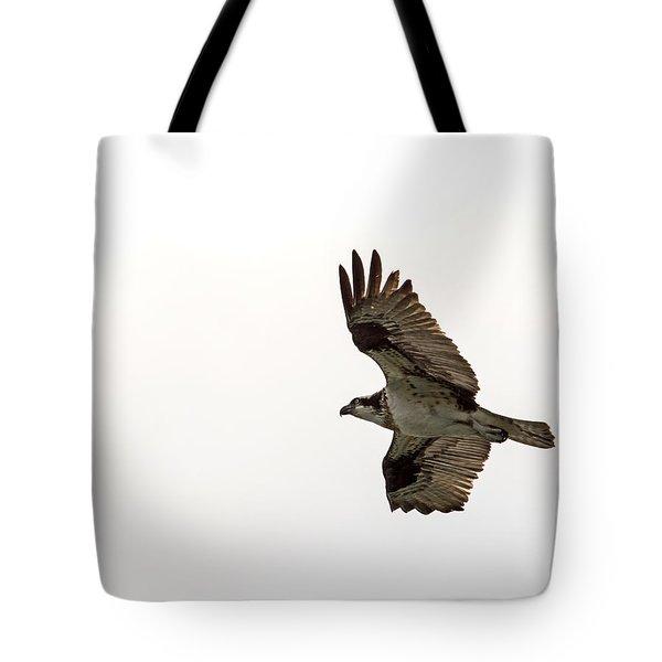Osprey Full Spread Tote Bag